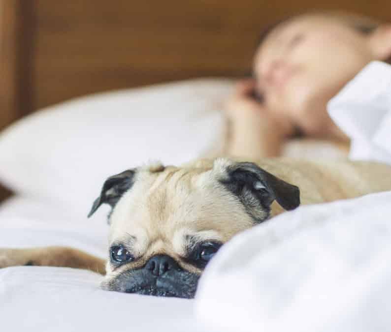5 Salon Business Ideas That Earn You Income While You Sleep