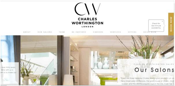 Wordpress Salon Website Theme