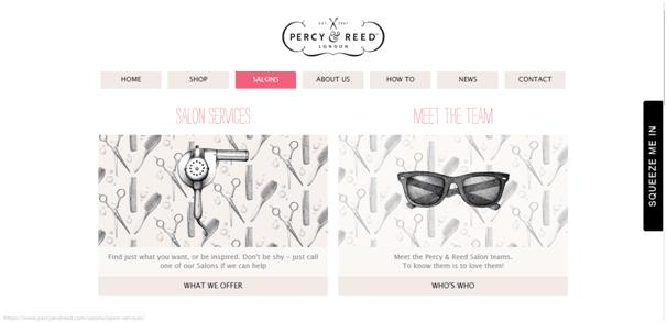 Salon website idea