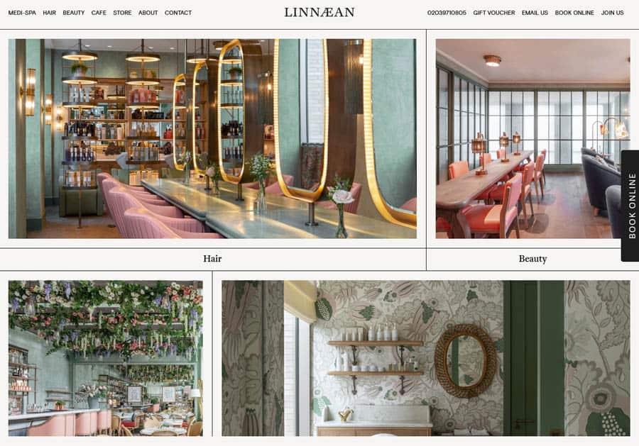 Linnaean Hair salon website design example