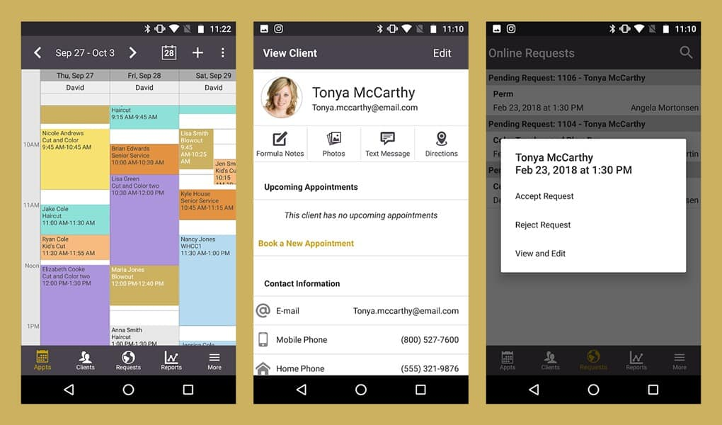 Screenshots of the Salon Iris appointment app