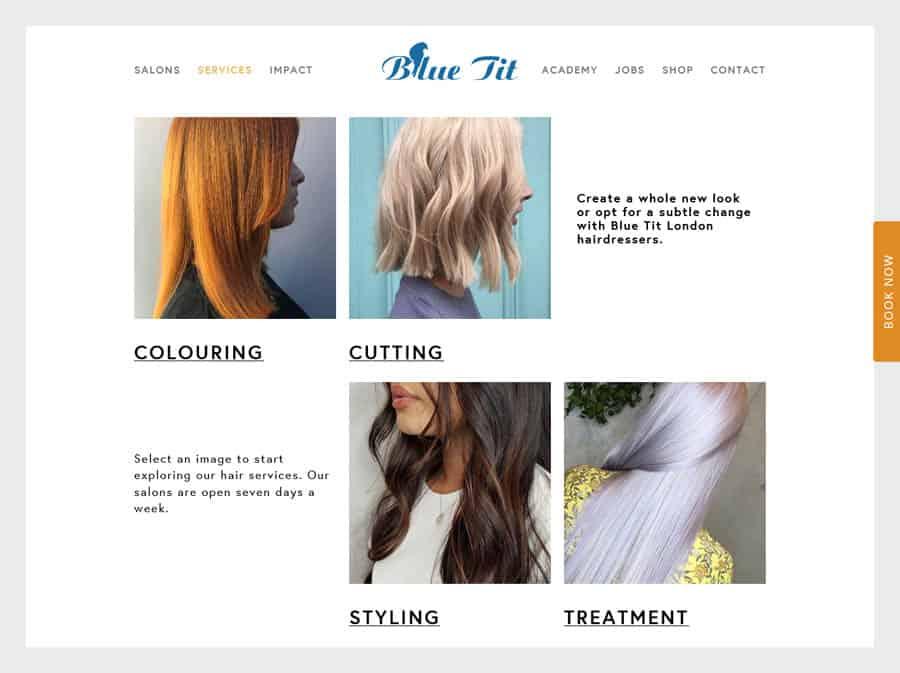 Blue Tit London Hair salon website design example