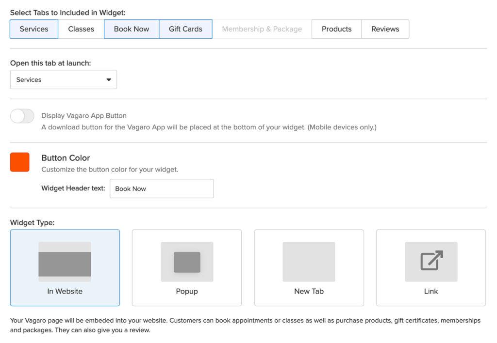 Vagaro website booking widget options